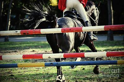Photograph - Horse Training by Dimitar Hristov