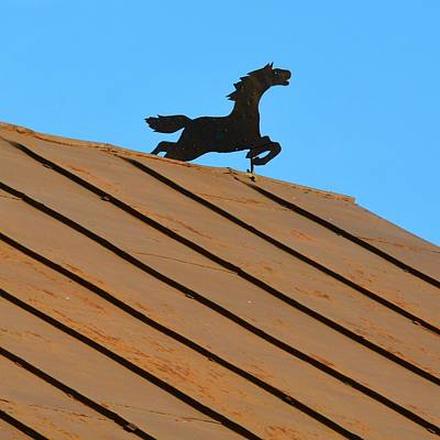 Photograph - Horse Weathervane On Rusty Roof by Tana Reiff