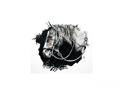 Drawing - Horse With Rope And Shadows by Paul Miller