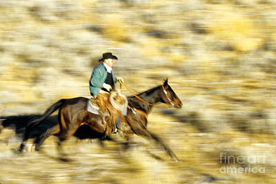 Working Cowboy Photograph - Horseback Rider by Inga Spence