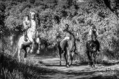Photograph - Horseback Rider Rearing Bw by David Zanzinger