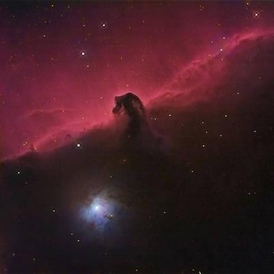 Horsehad Nebula II Art Print by Charles Warren