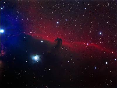 Photograph - Horsehead Nebula Color by Tony Sarra