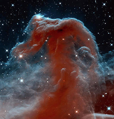Horsehead Nebula Art Print by Mark Kiver