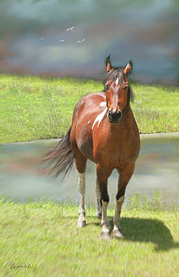 Digital Art - Horseing Around 2 by Bonnie Willis