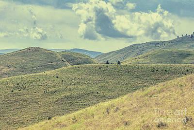 Photograph - Horselake Hills by Jean OKeeffe Macro Abundance Art