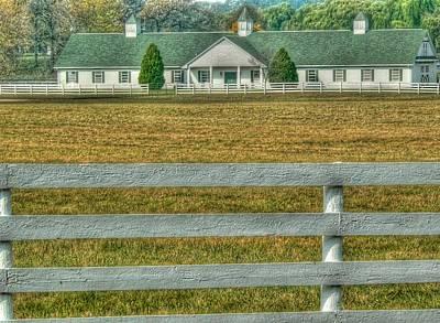 Horseland Art Print by David Bearden