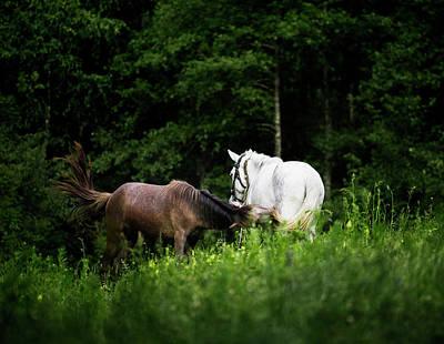 Horses 2 Original