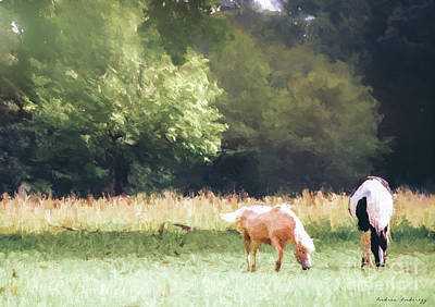 Photograph - Horses by Andrea Anderegg