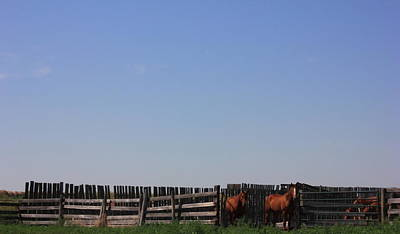 Horses - Corrals - And Alberta Prairie Sky Art Print by Jim Sauchyn