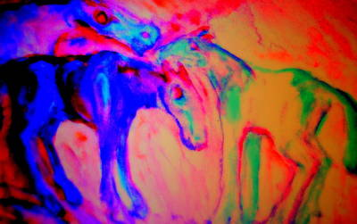 Neuroscience Painting - Horses Love Their Families Too  by Hilde Widerberg