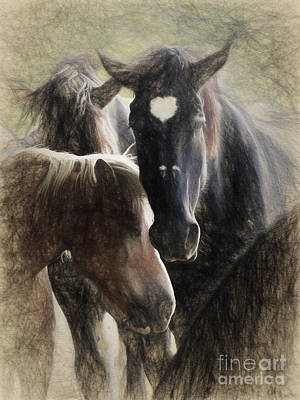 Digital Art - Horses by Elijah Knight