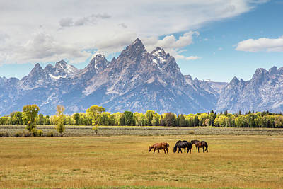 Photograph - Horses Grazing Beneath Grand Teton Peak by TL  Mair