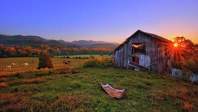 Photograph - Horses Grazing Under Abandoned Barn In Smoky Mountains Tennessee by Justin Kelefas