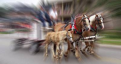 Rights Managed Images Photograph - Horses In Motion by David and Lynn Keller