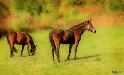 Digital Art - Horses In The Pasture by Ken Morris