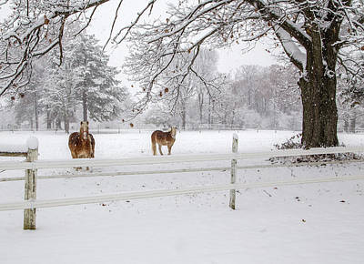 Horses In The Snow Original