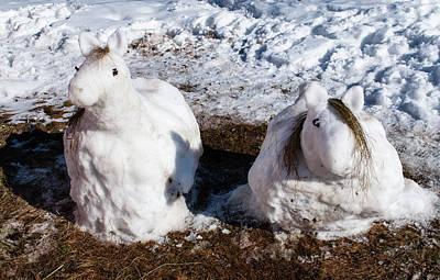 Photograph - Horses Of Snow by Tamara Sushko