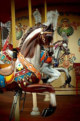 Photograph - Horses Of The Carousel by Dora Hathazi Mendes