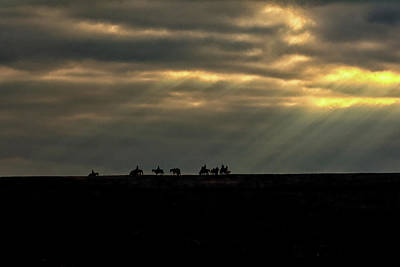 Photograph - Horses On Horizon by Cora Ahearn