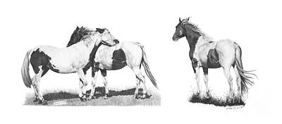 Custom Horse Portrait Drawing - Horses Pintos by Marianne NANA Betts