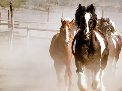 Digital Art - Horses Running Into A Dusty Ranch Corral by Nadja Rider