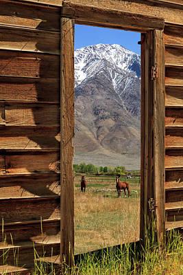 Photograph - Horses Through The Door by James Eddy
