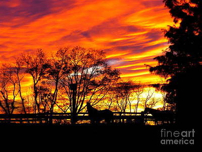 Horses Under A Painted Sky Art Print