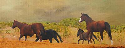 Digital Art - Horses Unlimited Photoart #1 by Walter Herrit