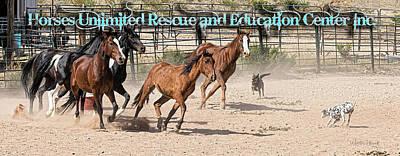 Digital Art - Horses Unlimited Rescue_nb by Walter Herrit