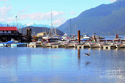 Photograph - Horseshoe Bay 2 by Victor K