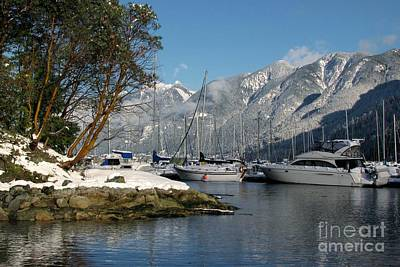 Photograph - Horseshoe Bay by Frank Townsley