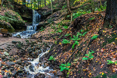 Photograph - Horseshoe Falls by Lonnie Paulson