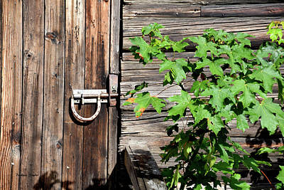 Photograph - Horseshoe Latch On The Barn Door by Barbara Snyder