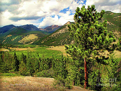 Photograph - Horseshoe Park, Rocky Mountain, Colorado by Joan Minchak
