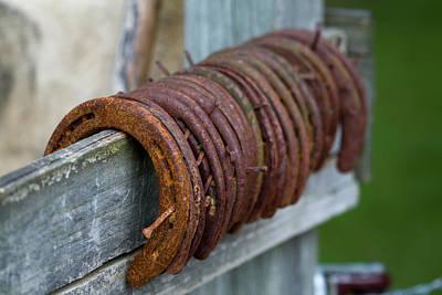 Photograph - Horseshoes  by Kathy Clark