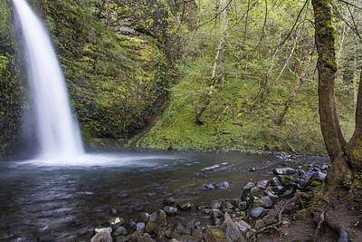Photograph - Horsetail Falls And Tree by John McGraw