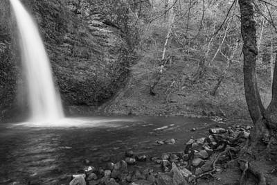 Photograph - Horsetail Falls Black And White With Tree by John McGraw
