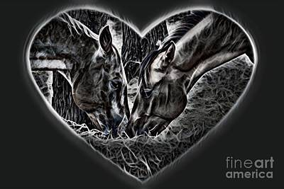 Photograph - Horsey Love Dark Shades by Cindy New