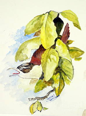 Painting - Horsfield's Babbler  by Jason Sentuf