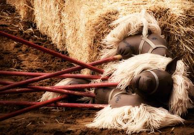 Stocktrek Images - Horsies by Eugene Campbell