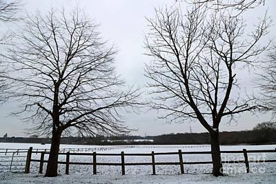 Photograph - Horton Country Park Epsom Surrey by Julia Gavin