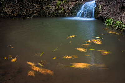 Photograph - Horton Creek Flowing Pool And Waterfall by Dave Dilli