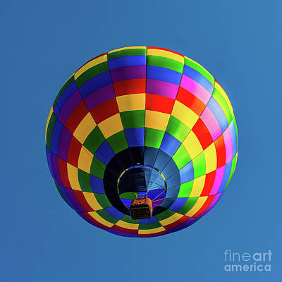 Photograph - Hot Air Balloon 8 by Nick Zelinsky