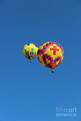 Photograph - Hot Air Balloon Buddies by Karen Adams