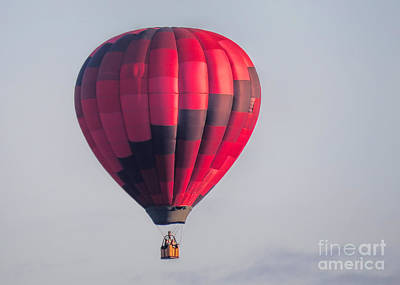 Photograph - Hot Air Balloon  by Janice Drew