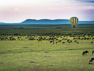 Photograph - Hot Air Balloon Over Serengeti by Robin Zygelman
