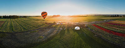 Photograph - Hot Air Balloon Taking Off At Sunrise by William Lee
