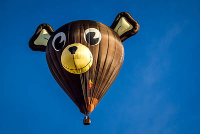 Photograph - Victor The Bear - Hot Air Balloon by Ron Pate