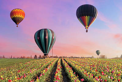 Photograph - Hot Air Balloons At Tulip Fields by David Gn